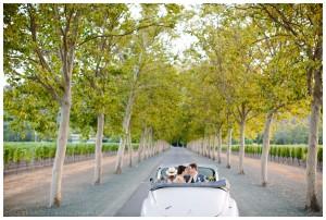 Napa wedding